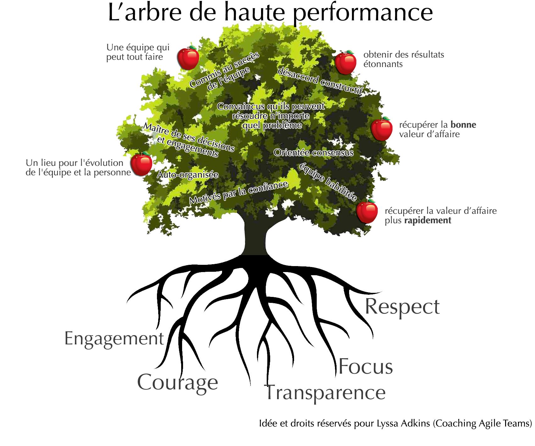 Arbre Avec Racine les racines et les fruits de l'agilité, ou l'utilisation de la